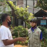 HPPMI DKI Jakarta bersama RW 03 Kel Kayuputih berkolaborasi menjadikan lahan tidur di Jakarta embrio ketahanan Pangan