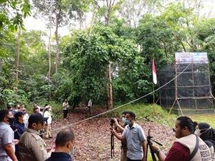 Tiga Ekor Elang Dimerdekakan BKSDA Sumsel