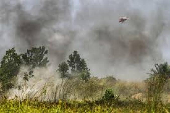 Kebakaran Hutan dan Lahan yang Terjadi Sejumlah Wilayah di Indonesia, 99 Persen Terjadi Karena Intervensi Manusia