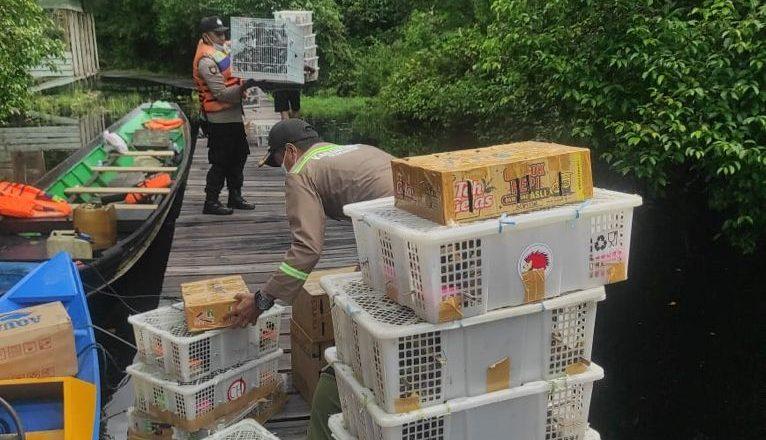 Pengiriman Burung Ilegal di Kalteng Berhasil Digagalkan