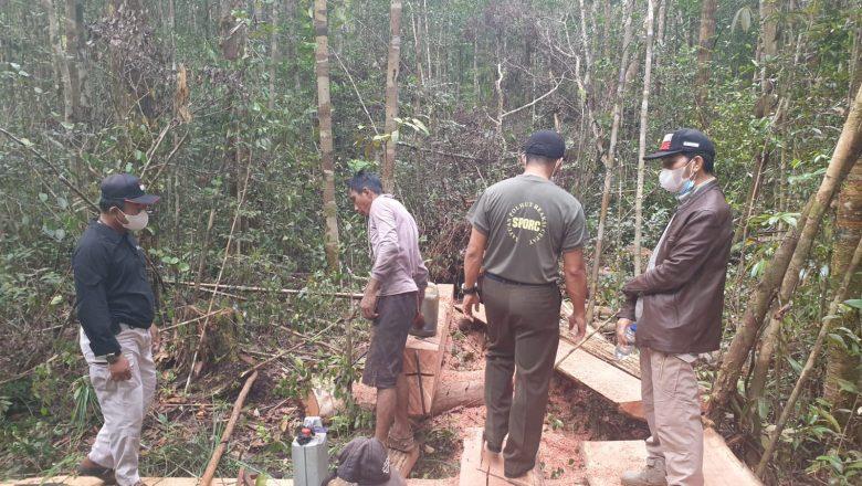Balai Gakkum KLHK Kalimantan Tetapkan AS Sebagai Tersangka Pembalakan Ilegal